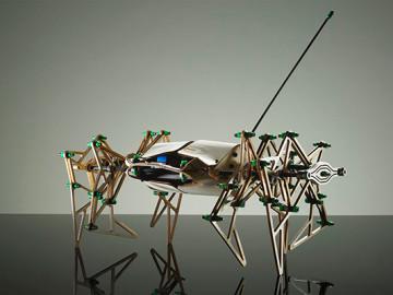 Arachnoss